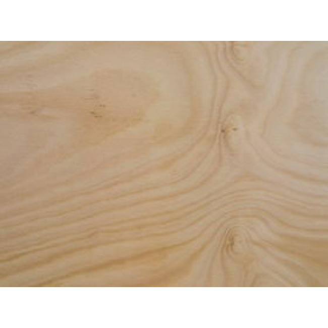 Wilson Timbers